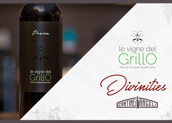 Le Vigne del Grillo – Divinities thumb