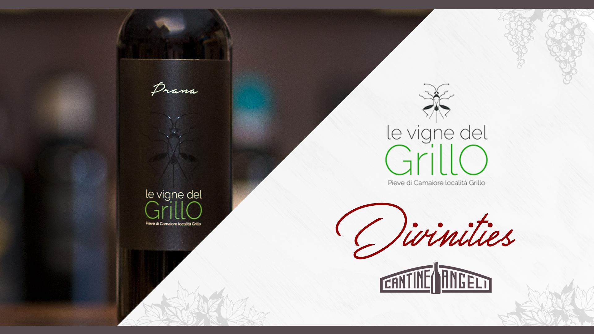 Le Vigne del Grillo – Divinities cover